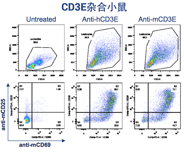 """T cell stimulation assay following anti-CD3 administration in CD3E knock-in mouse"""""""