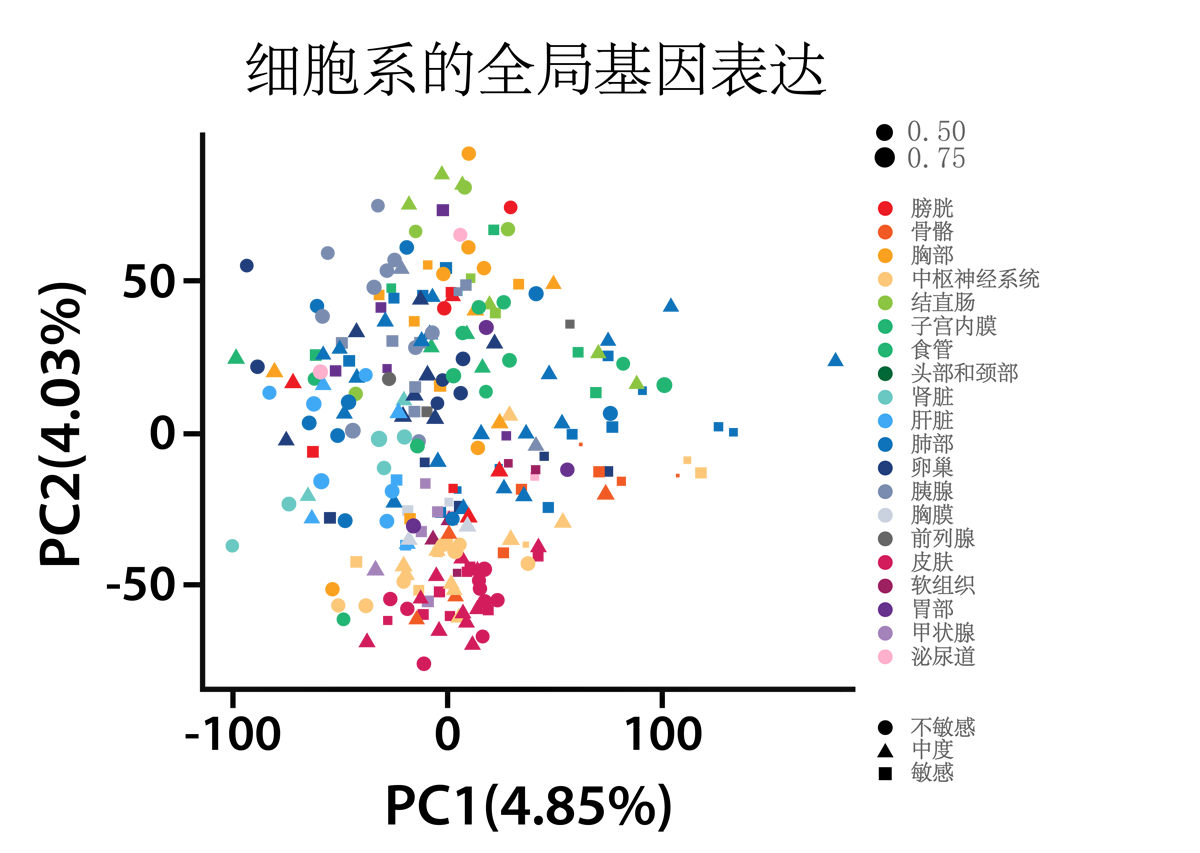 genomics services example data showing global gene expression of cell lines