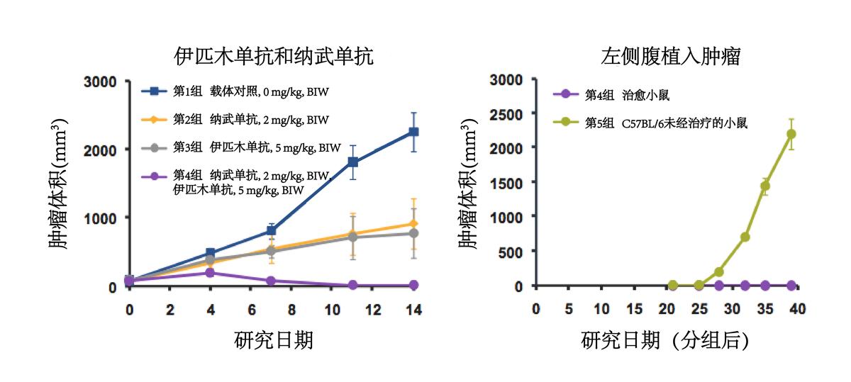 Performance of Ipilimumab and Nivolumab in a PD-1/CTLA-4 knock-in mouse model